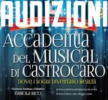 Foto AUDIZIONI Locandina Accademia